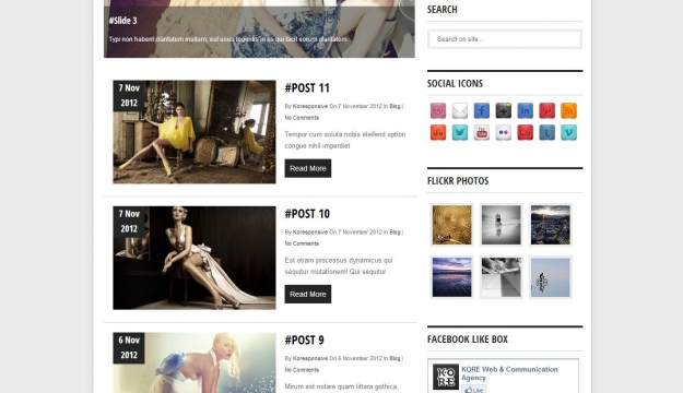 Koresponsive WordPress template